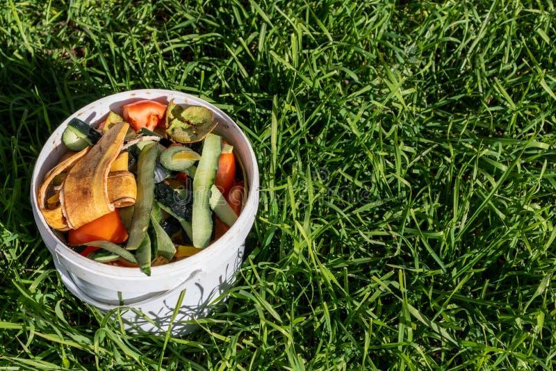 Pbucket bianco di ortaggi e di frutta contro l'erba verde lunga immagine stock