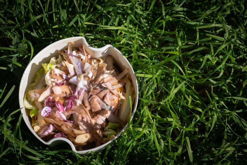 Pbucket bianco di ortaggi e di frutta contro l'erba verde lunga fotografie stock