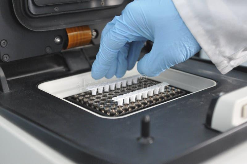 PCR实时 免版税库存照片