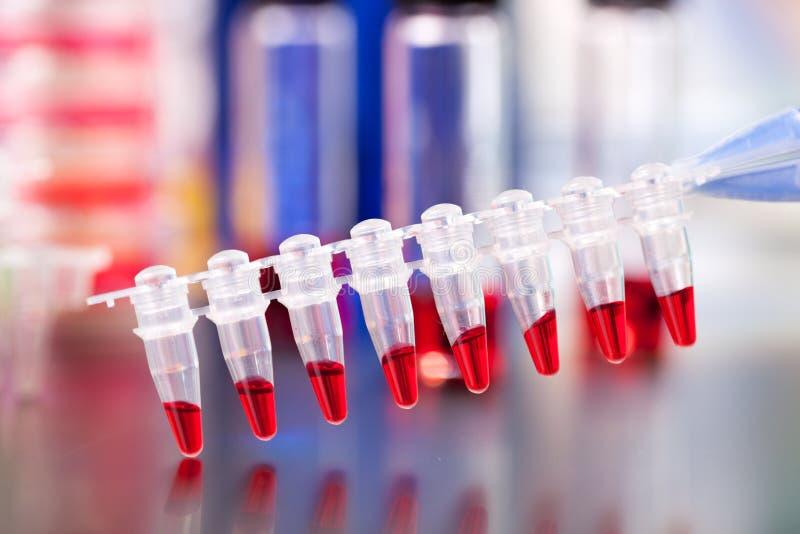 PCR micro- buizenstroken stock fotografie