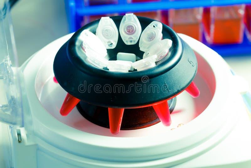 Pcr-rör i centrifugPCR-rör i centrifug royaltyfri foto