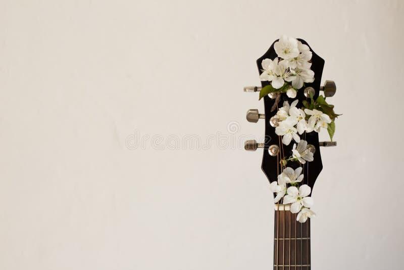 Peça da guitarra com cereja da flor fotografia de stock