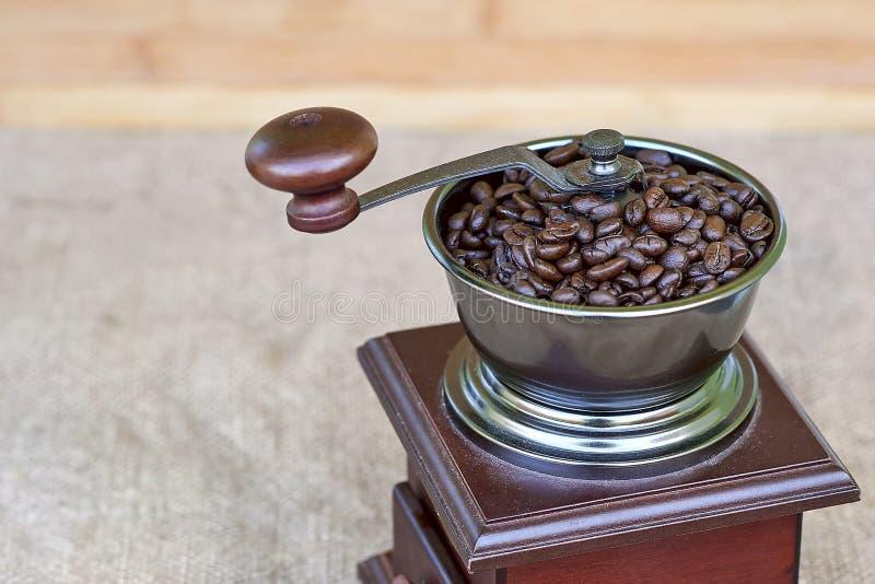 Peça superior do moedor de café completamente de feijões de café roasted fotografia de stock