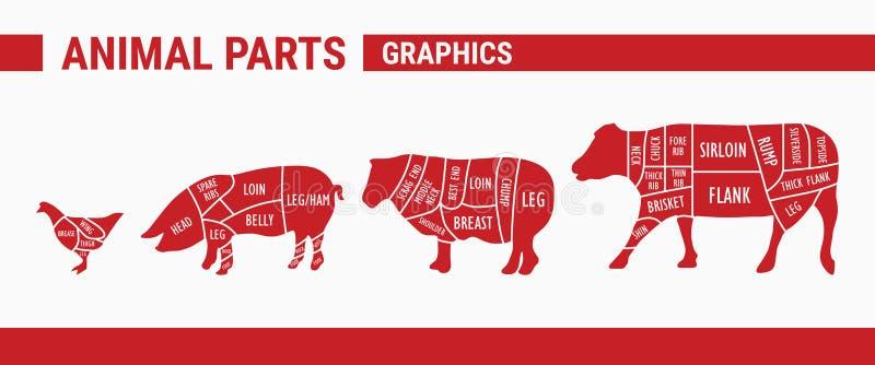 Peças animais - gráficos ilustração stock