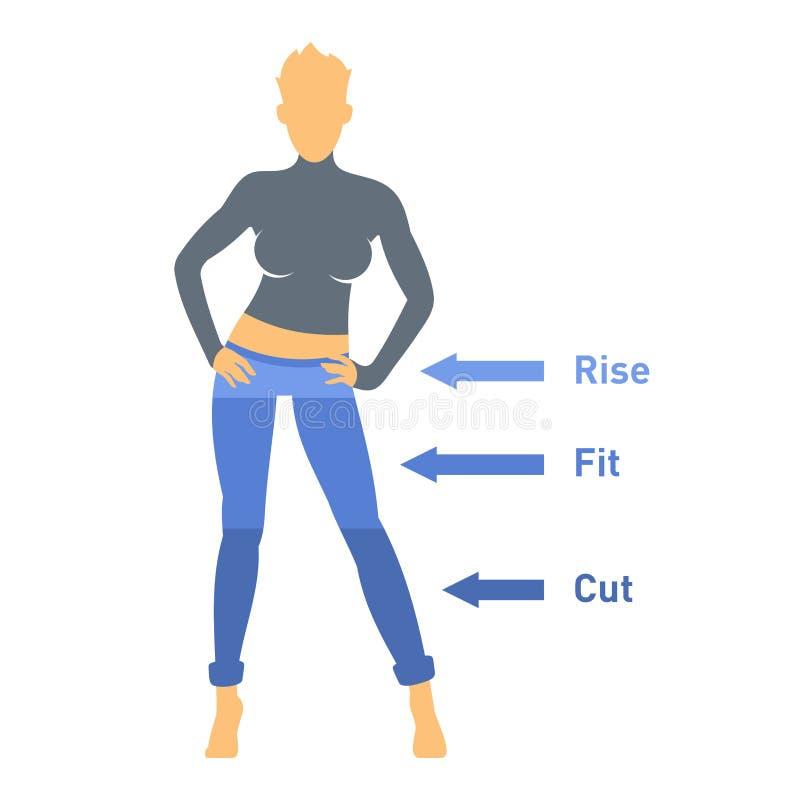 Peças das calças de brim das mulheres ajustadas ilustração stock