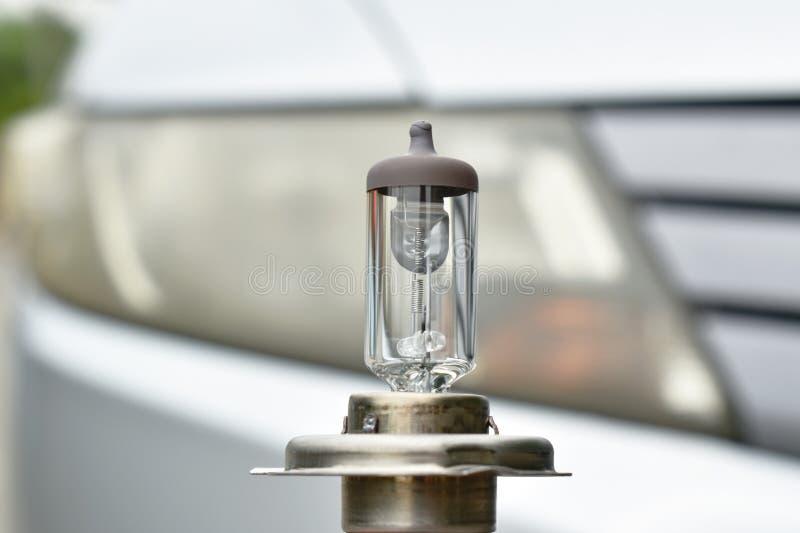 Peças sobresselentes do veículo da ampola do halogênio no fundo principal da lâmpada do carro fotografia de stock