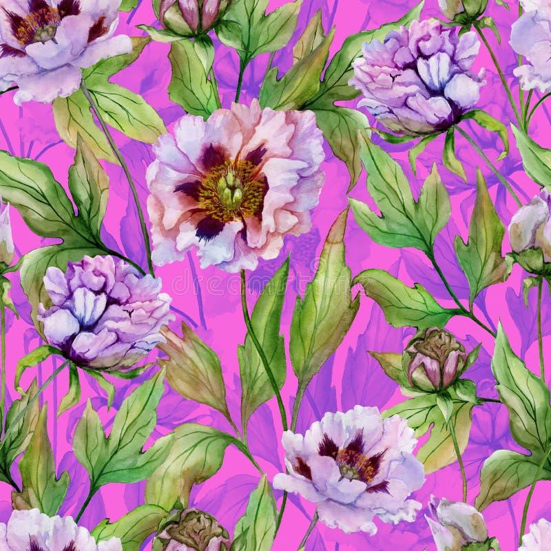 Peônia chinesa bonita com as folhas verdes no fundo cor-de-rosa brilhante Teste padrão floral sem emenda Pintura da aguarela Mão  ilustração royalty free