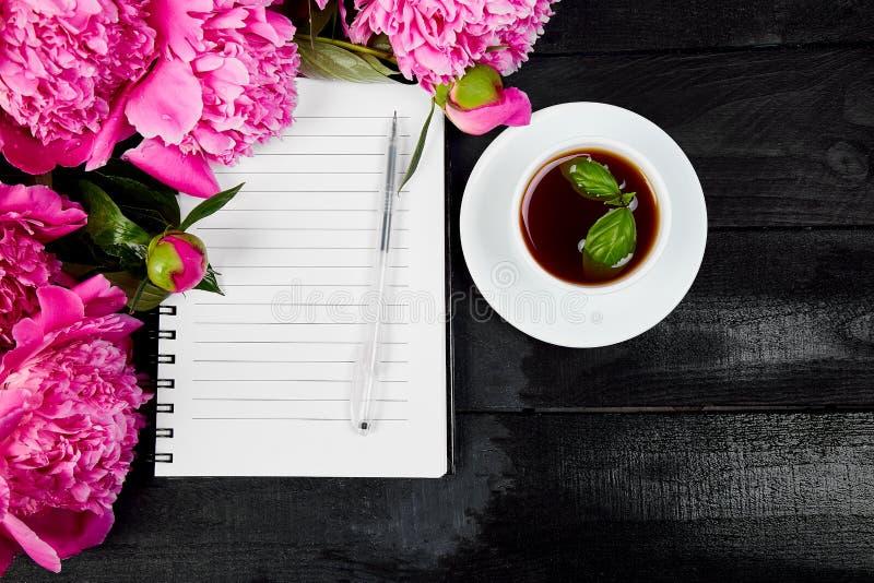 A peônia cor-de-rosa bonita floresce no fundo preto com nota imagem de stock