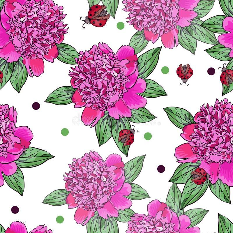 Peônia cor-de-rosa Joaninha vermelho Teste padrão sem emenda brilhante com as flores realísticas bonitas ilustração stock