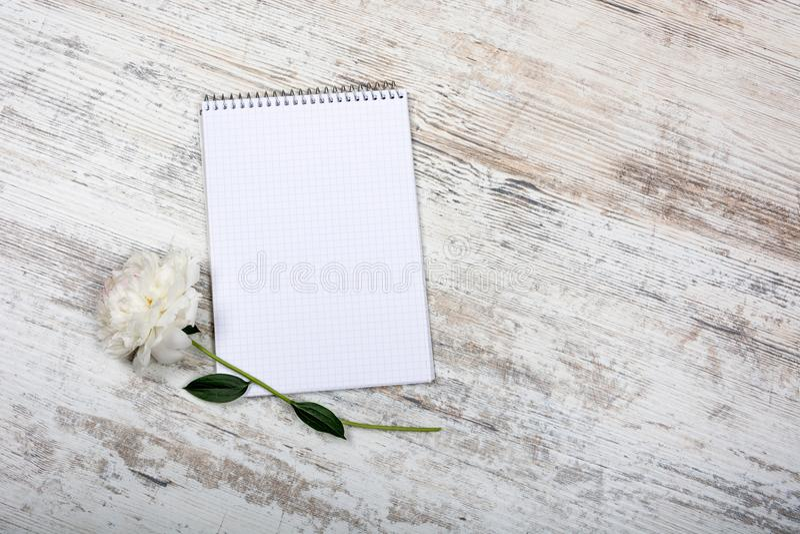 Peônia e bloco de notas para entradas em uma gaiola, encontrando-se em uma tabela clara velha, horizontalmente, romance, vista su imagem de stock