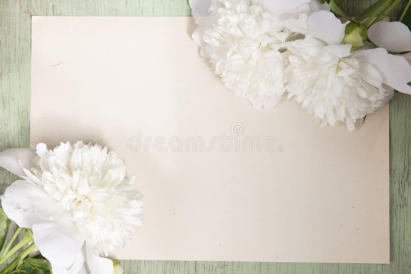 Peônias brancas no fundo do papel do ofício imagem de stock royalty free