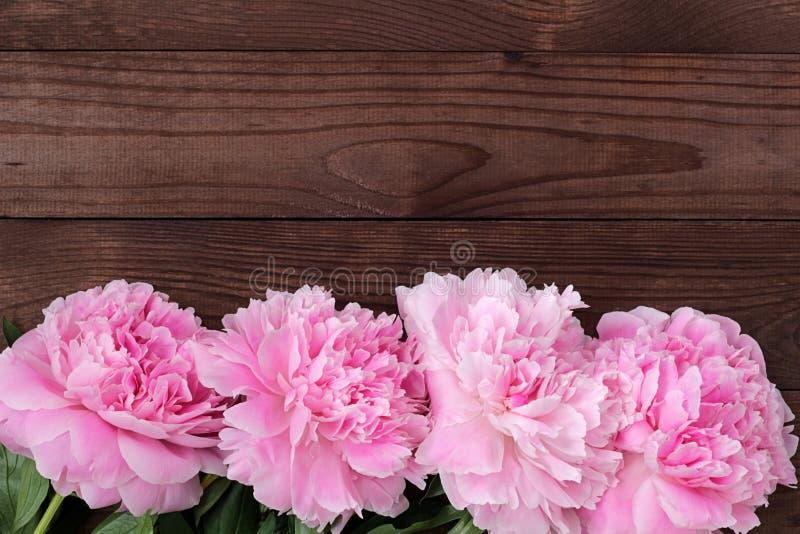 Peônias de florescência cor-de-rosa delicadas em um fundo de madeira escuro áspero imagens de stock royalty free