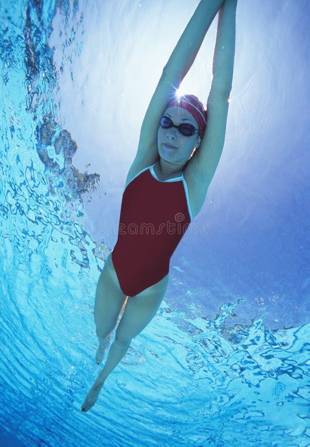 Pełna długość żeńska pływaczka w Stany Zjednoczone z rękami podnosił swimsuit dopłynięcie w basenie obraz stock