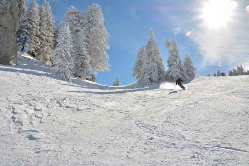 Pełna długość narciarki narciarstwo zdjęcie royalty free
