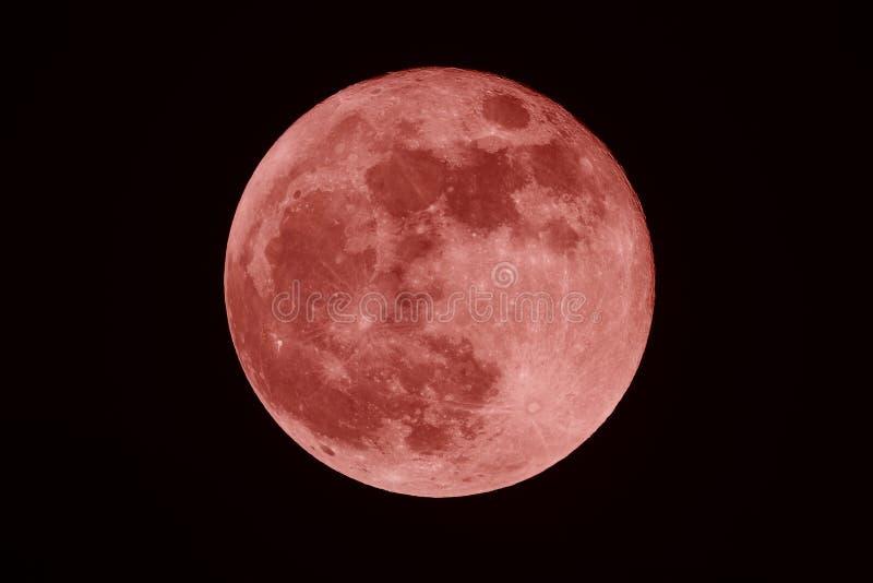 Pełnej krwi Luna na ciemnym nocy tle i księżyc obraz stock