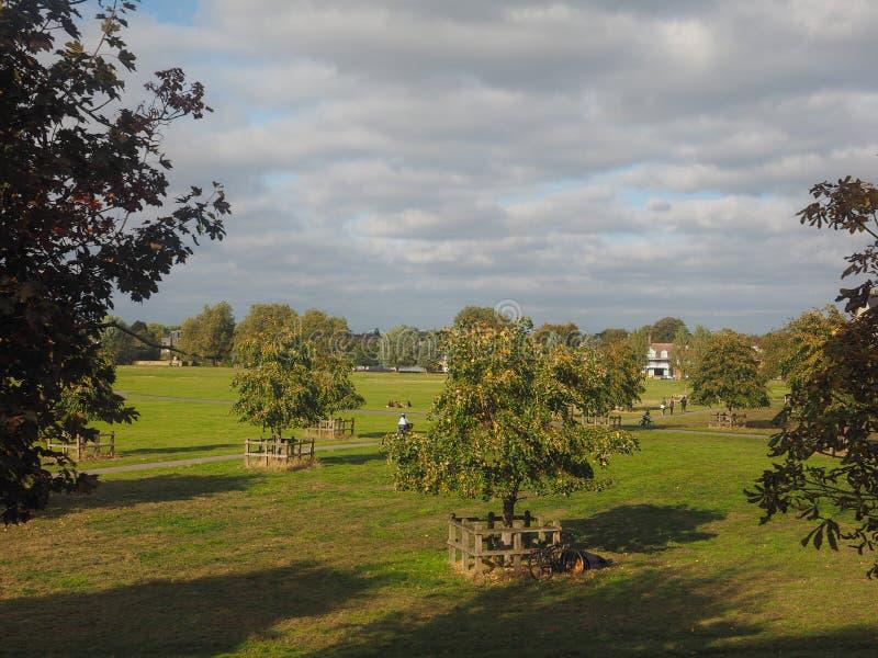 Pełni latej błonia park w Cambridge obraz stock