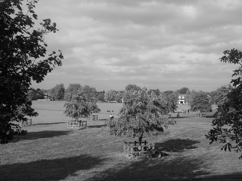 Pełni latej błonia park w Cambridge w czarny i biały zdjęcia royalty free