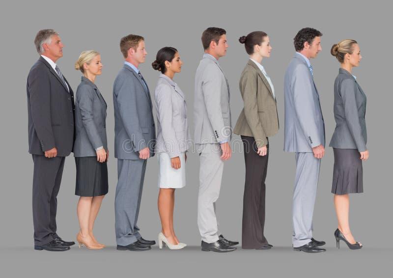 Pełny ciało portret ludzie biznesu stoi w linii z popielatym tłem zdjęcie stock