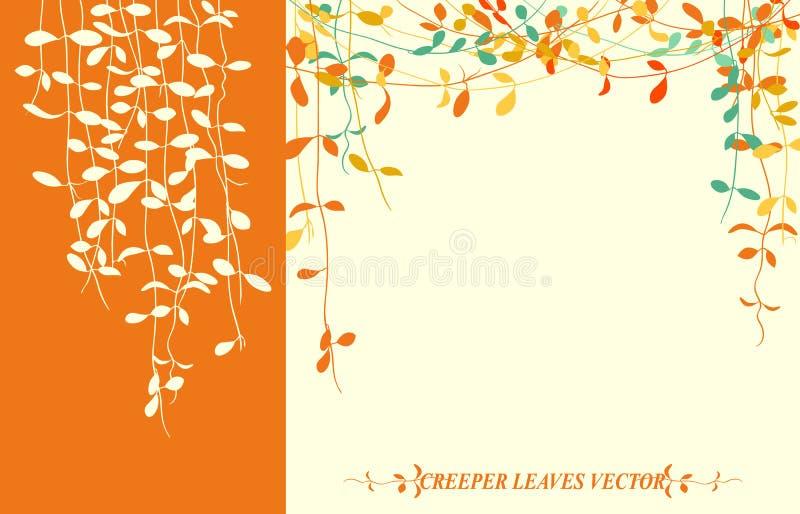 Pełzaczów liście ilustracji