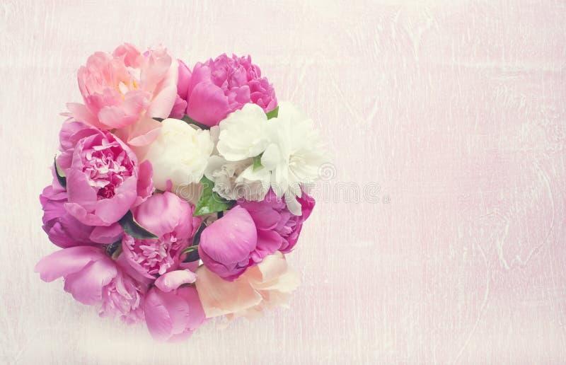 A peônia do ramalhete florescem o rosa e vermelho, em um fundo cor-de-rosa Copie o espaço imagem de stock