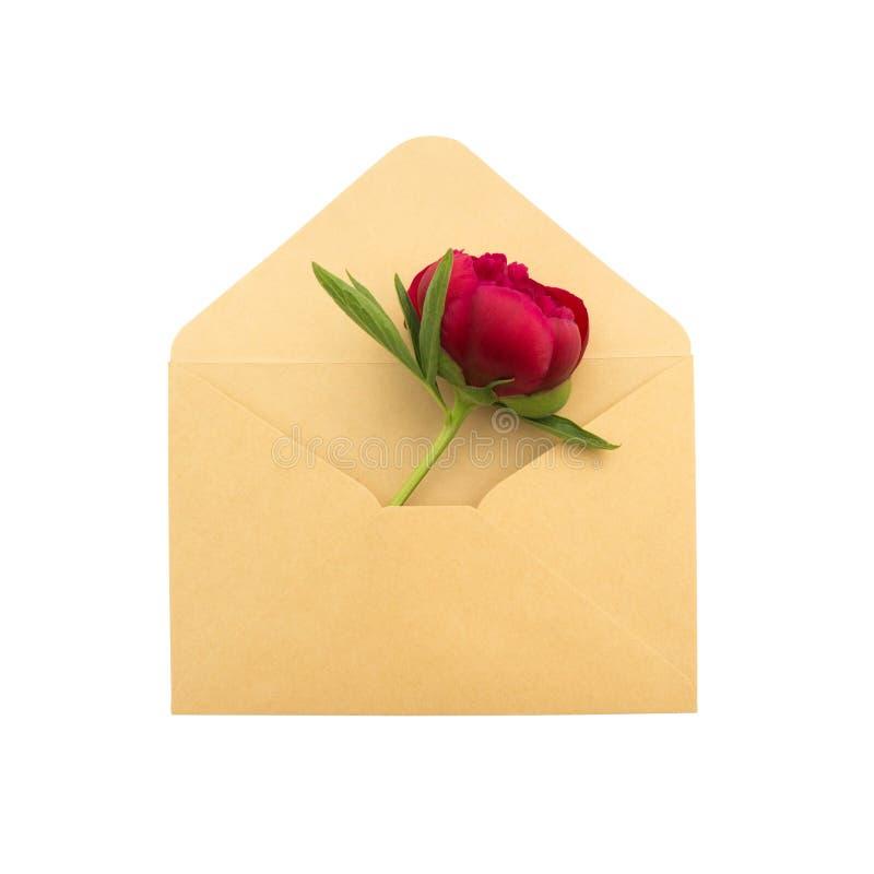 Peônia em um envelope imagens de stock royalty free