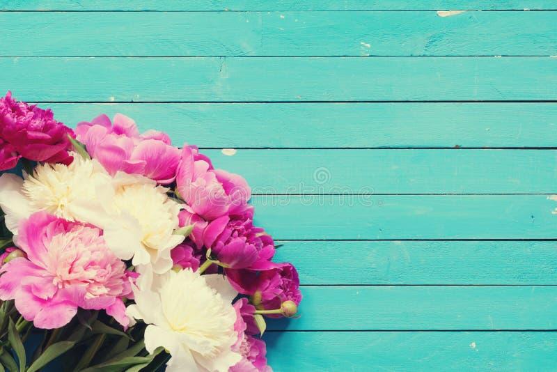 Peônias cor-de-rosa e brancas sobre o fundo de madeira de turquesa velha fotografia de stock