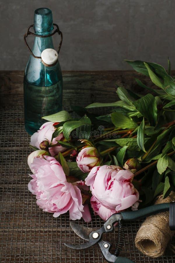 Peônias cor-de-rosa impressionantes na madeira rústica escura imagem de stock royalty free