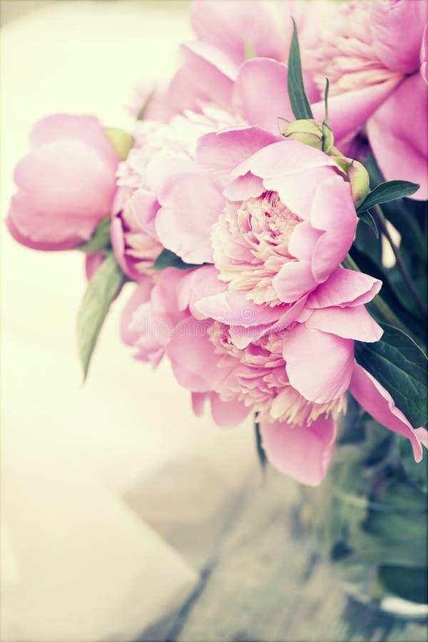 Peônias cor-de-rosa no fundo de madeira - foto do vintage foto de stock