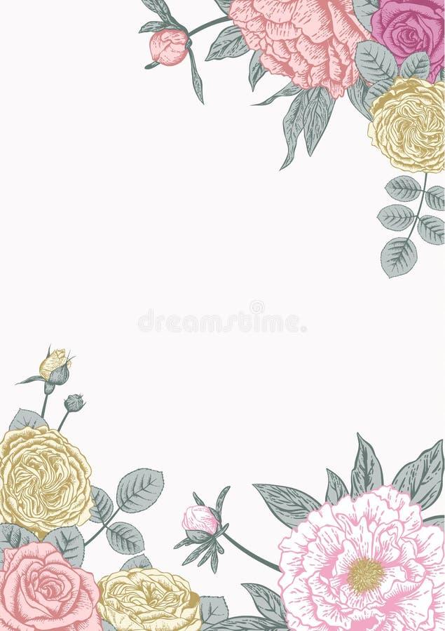 Peônias e rosas Cartão de casamento ilustração do vetor