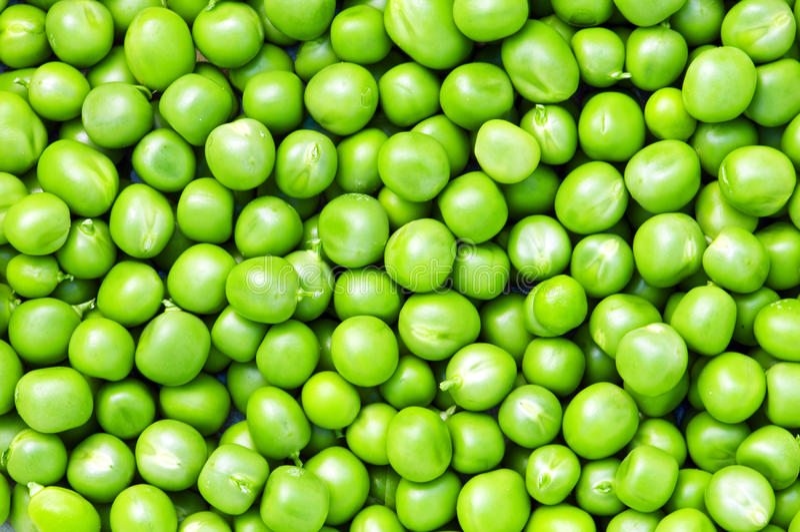 Download Pea stock image. Image of fresh, food, closeup, vegetable - 26126227