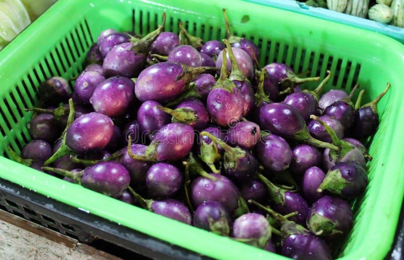 Pea Eggplant som är violett i korgen på marknaden arkivfoto