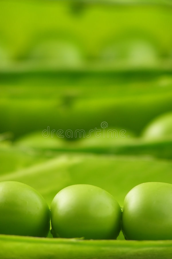 Pea pods stock images