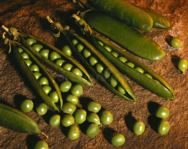 Pea pods stock photography