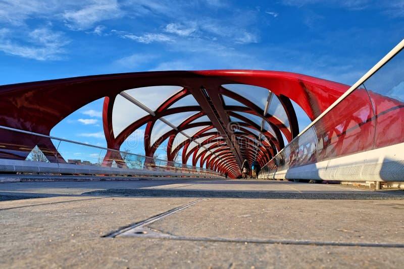 Peace Bridge Calgary, Alberta stock images