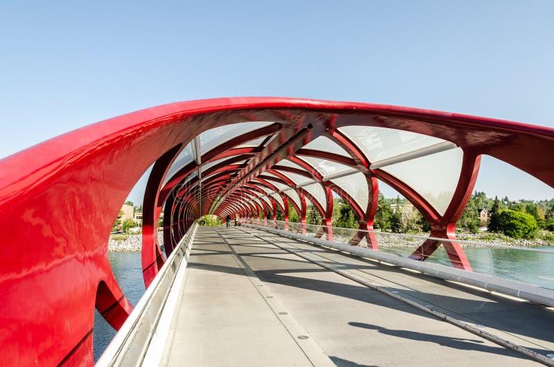 Peace Bridge in Calgary stock photography