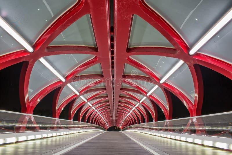 Night view of Calgary`s Peace Bridge. royalty free stock photos
