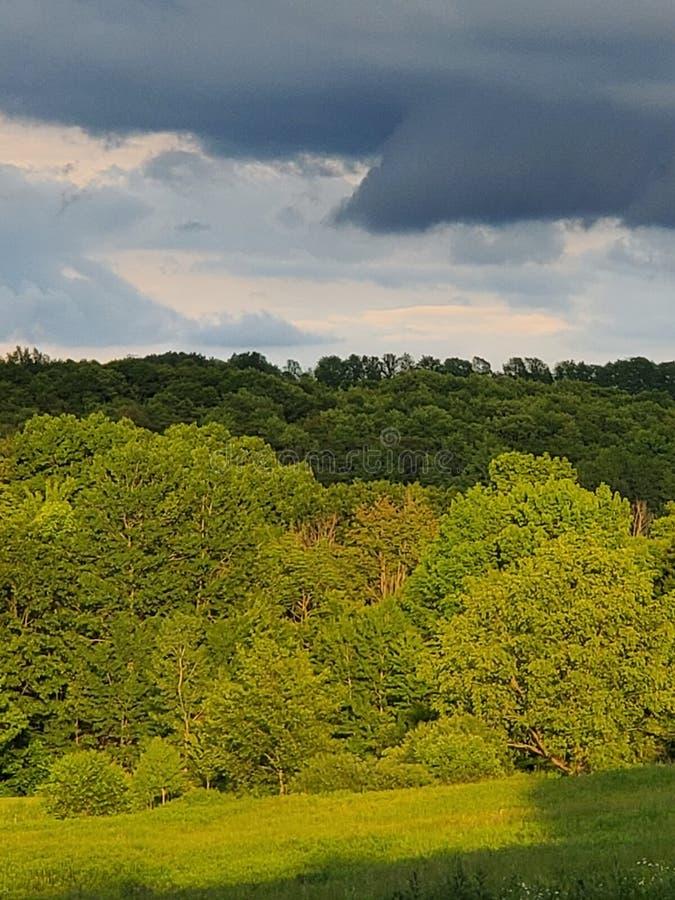 Peace. Cloudy, green, summer, shadows stock photography