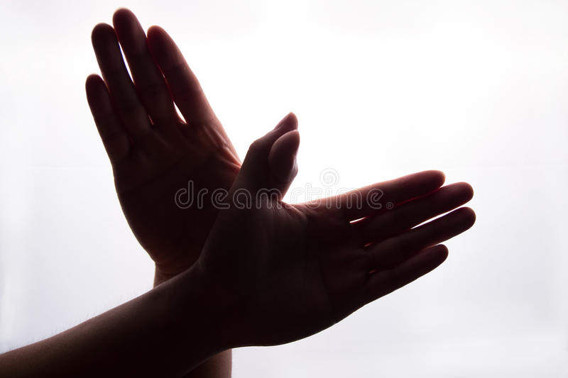 Peace dove by hands stock images