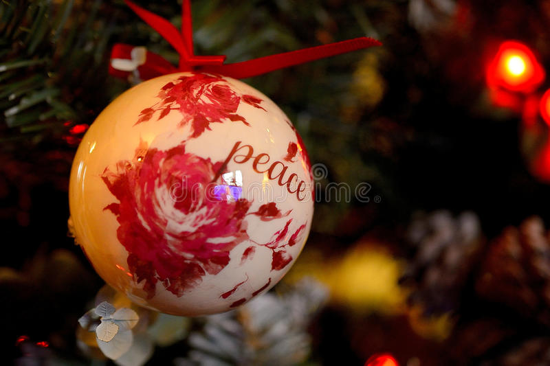 Peace on earth royalty free stock image