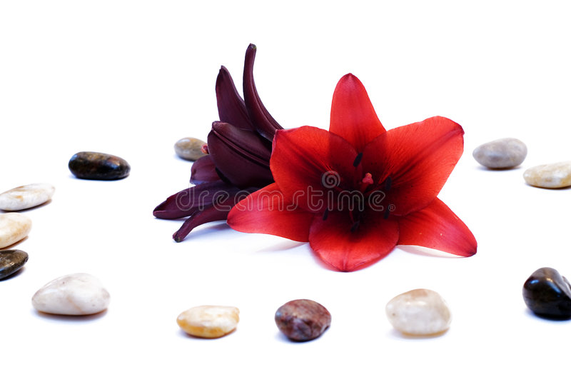 Download Peace and Relaxation stock image. Image of soothe, calm - 5920845