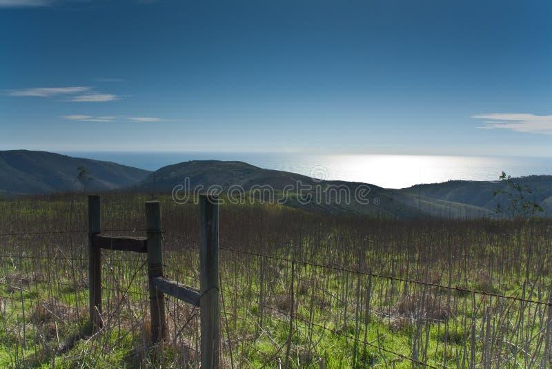 Peaceful Landscape stock image