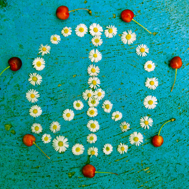 Peace sign peace symbol peace design on blue background. Peace sign, peace symbol, peace design created of daisy flowers on textured blue background stock photos