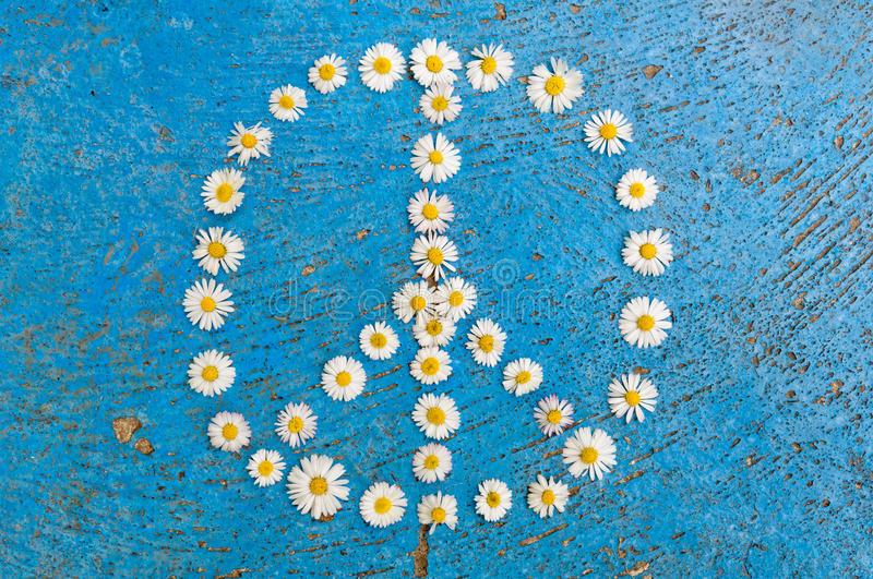 Peace sign peace symbol peace design on blue background. Peace sign, peace symbol, peace design created of daisy flowers on textured blue background stock photography