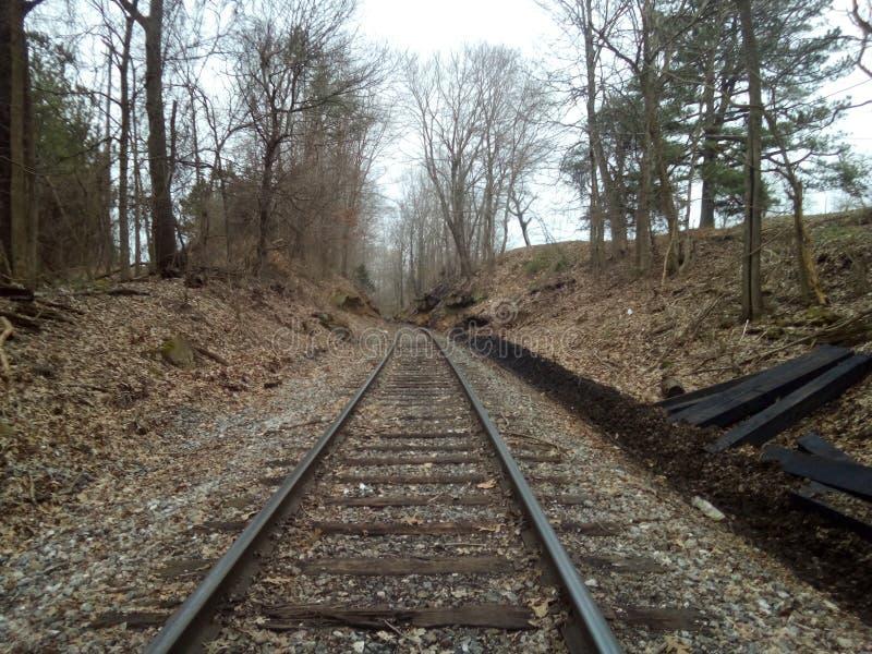 Peace. Train, walk, nature, outdoors royalty free stock image