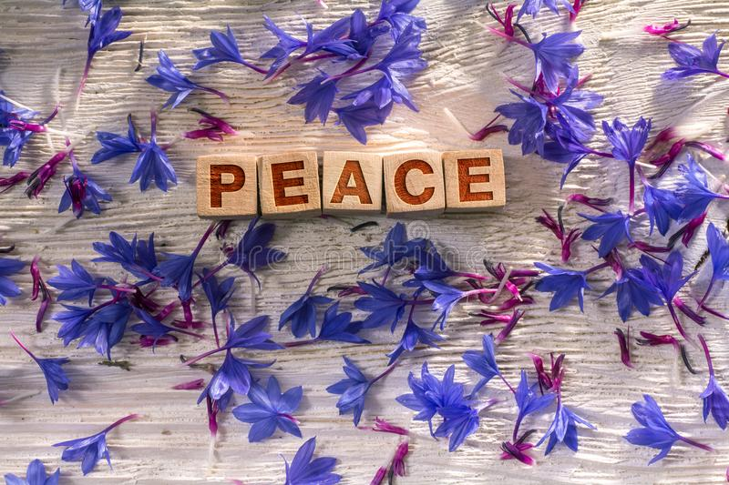 Peace on the wooden cubes. Peace written on the wooden cubes with blue flowers on white wood stock image