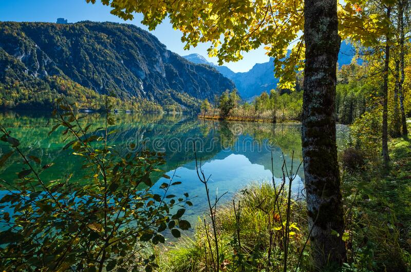 Peaceful autumn Alps mountain lake with clear transparent water and reflections. Almsee lake, Upper Austria. Sunny idyllic colorful autumn alpine view. Peaceful royalty free stock images