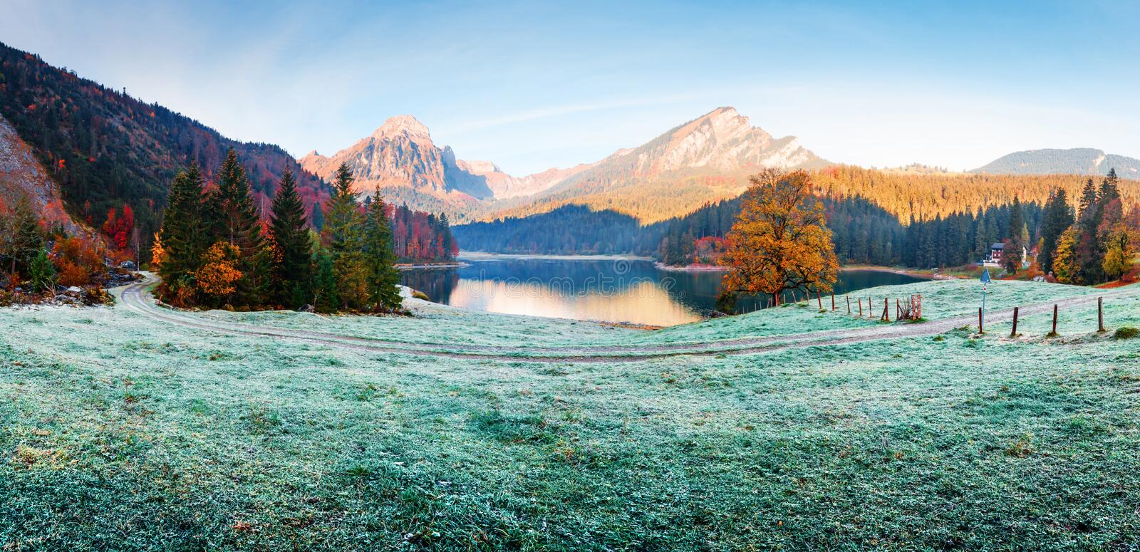 Peaceful autumn view on Obersee lake in Swiss Alps stock image