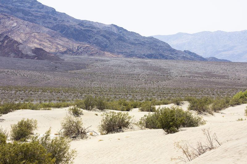 Peaceful desert scenery royalty free stock photography