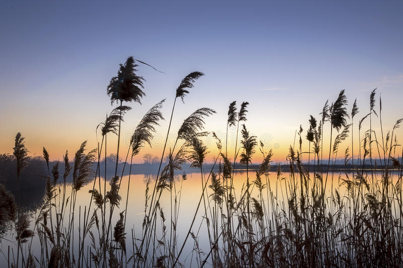 Peaceful evening royalty free stock images