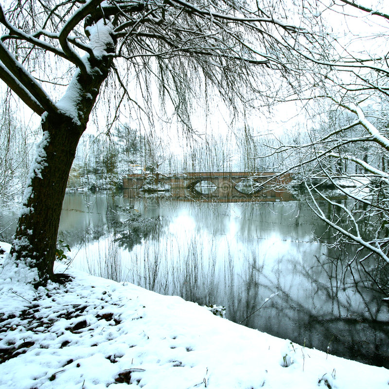 Peaceful Frozen Lake In The Middle Of Winter Stock Image